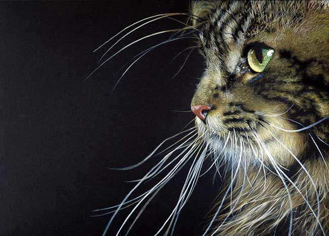 Notruf aus italien katze von ast aufgespiesst und - Acrylbilder vorlagen kostenlos ...