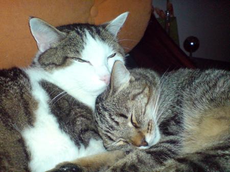 Lucie mit ihrer grossen Liebe Omar