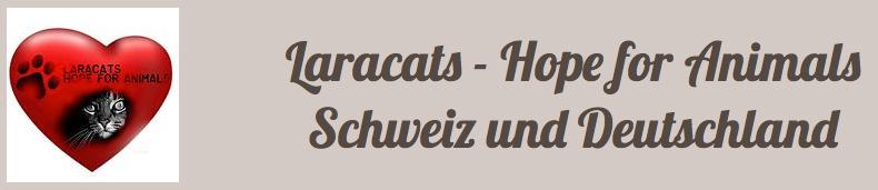 Laracats